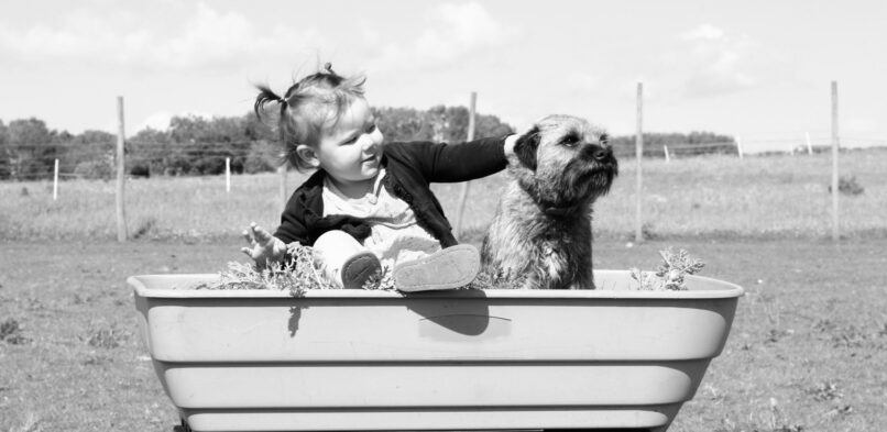 Helping Children Grieve    How to Help Your Child Cope With the Death of a Pet – eHow.com